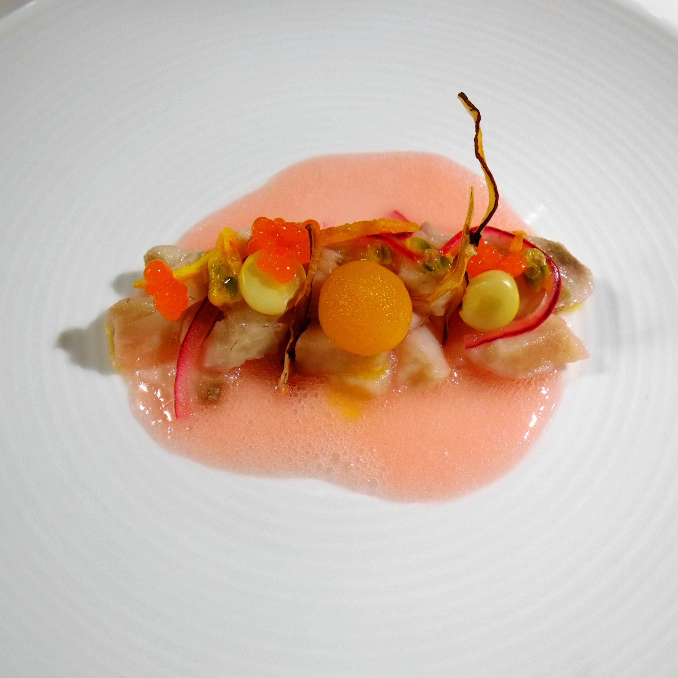 example of plated techno emotional cuisine