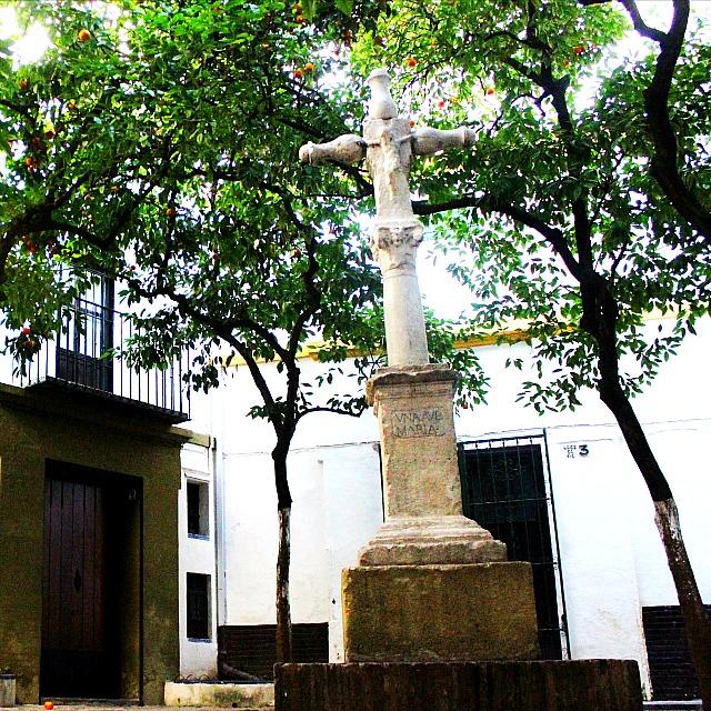 santa cruz seville