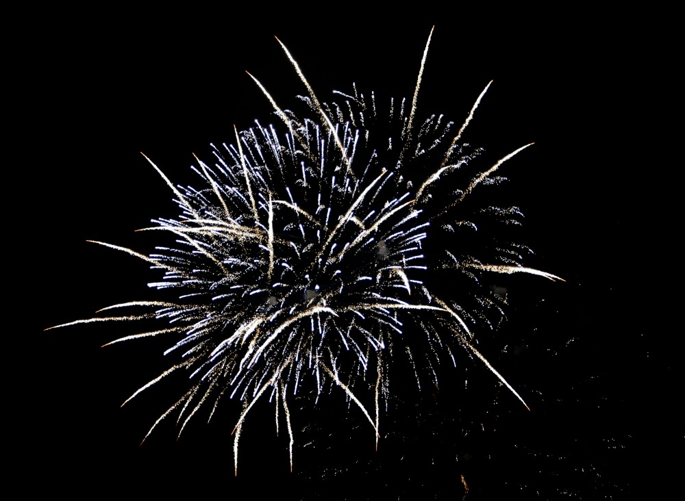 Fireworks bursting in a black night sky
