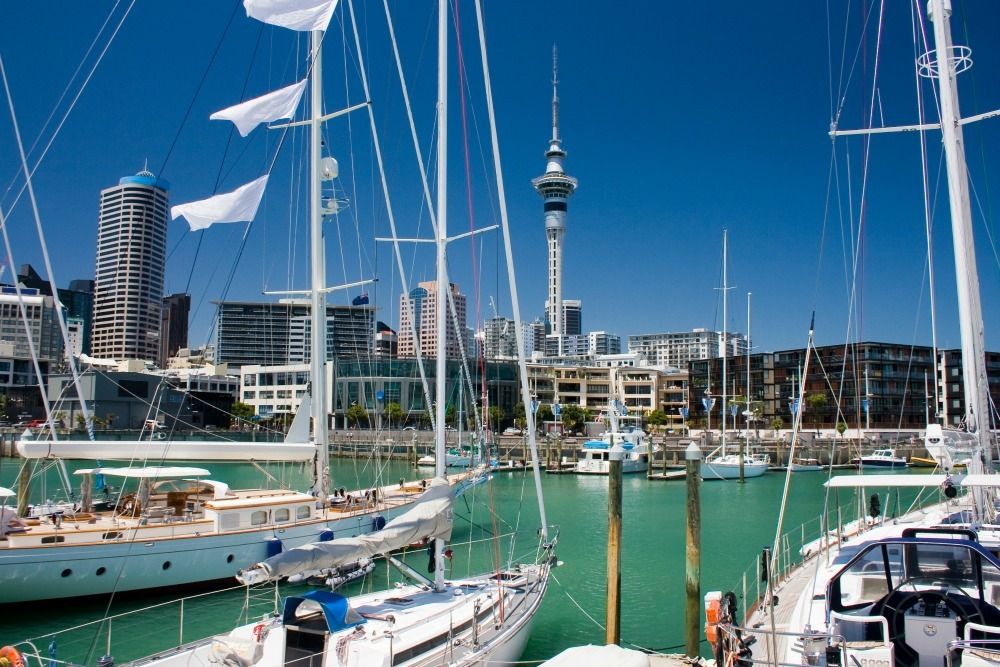 boats in the harbour in Auckland