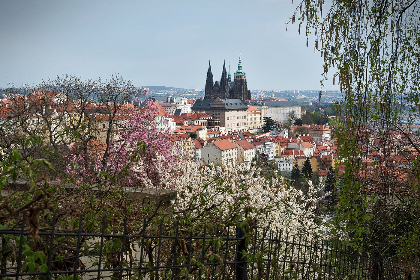 Looking from above over the castle of Prague