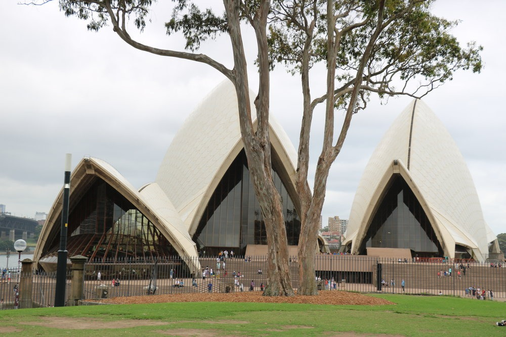 view of Sydney Opera House from a park