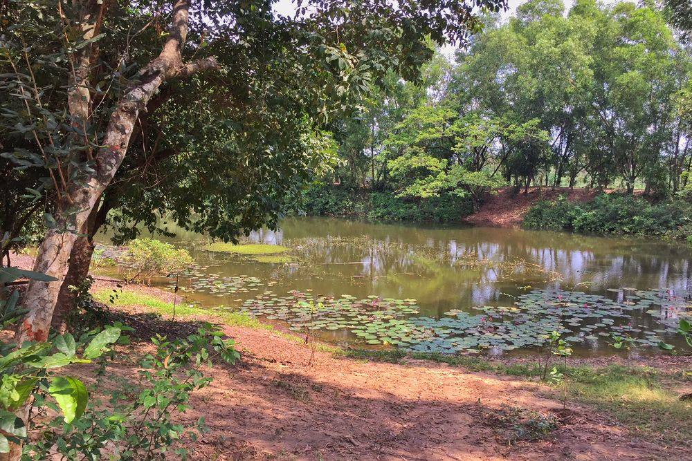 pond at the Killing Fields in Cambodia